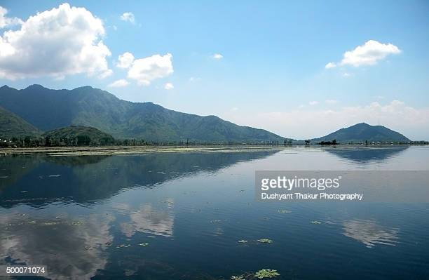 dal lake, srinagar, india - kashmir valley stock photos and pictures