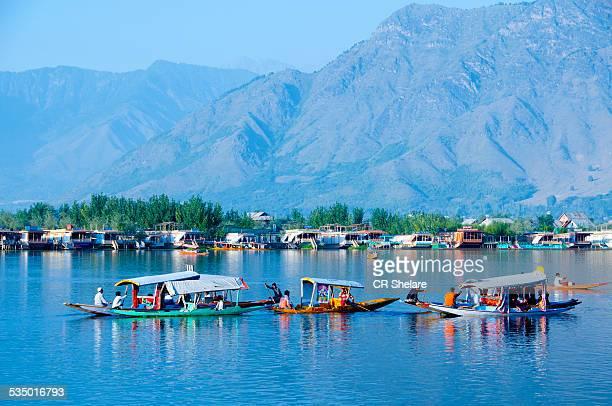 dal lake, srinagar, jammu & kashmir, india - kashmir valley stock photos and pictures