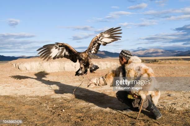 Dalai Han an Kazakh eagle hunter with his Golden Eagle BayanUlgii in Altai Mountains western Mongolia