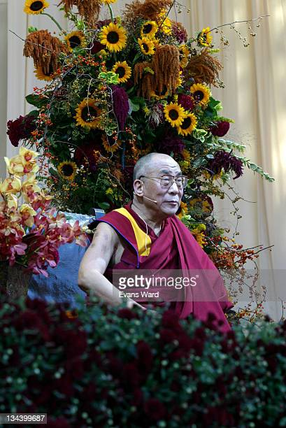 Dalai Lama addresses the crowd during His Holiness The Dalai Lama Gives a Public Talk for New York at Central Park in New York City NY United States