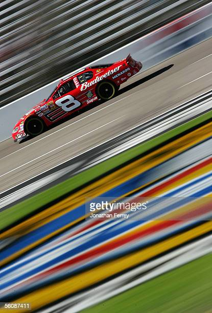 Dale Earnhardt Jr. Drives the Budweiser Chevrolet during practice for the NASCAR Nextel Cup Series Dickies 500 on November 4, 2005 at Texas Motor...