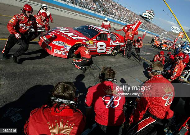 Dale Earnhardt Jr pits his Budweiser Dodge uring the NASCAR Winston Cup Checker Auto Parts 500 on November 2 2003 at Phoenix International Raceway in...