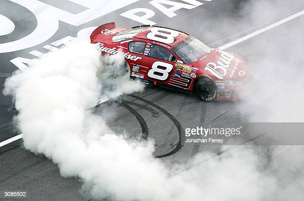 Dale Earnhardt Jr smokes his tires doing donuts in his Budweiser Chevrolet after winning the NASCAR Nextel Cup Golden Corral 500 on March 14 2004 at...