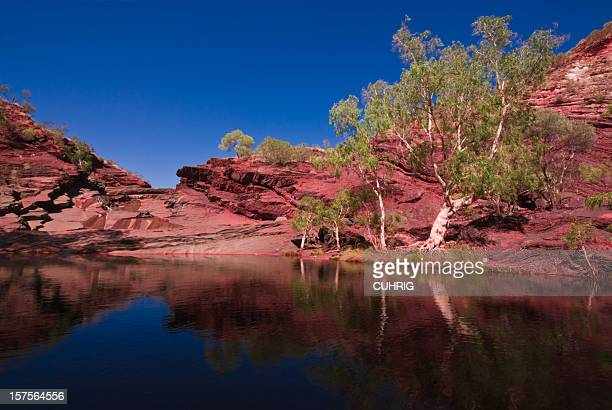 dale gorge karijini national park creek - western australia stock photos and pictures