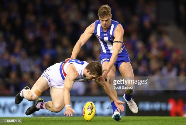 Dale Morris of the Bulldogs and Mason Wood of the Kangaroos compete for the ball during the round 21 AFL match between the North Melbourne Kangaroos...