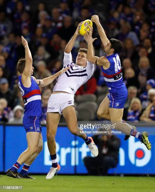Dale Morris of the Bulldogs, Rory Lobb of the Dockers and Easton Wood of the Bulldogs compete for the ball during the 2019 AFL round 19 match between...
