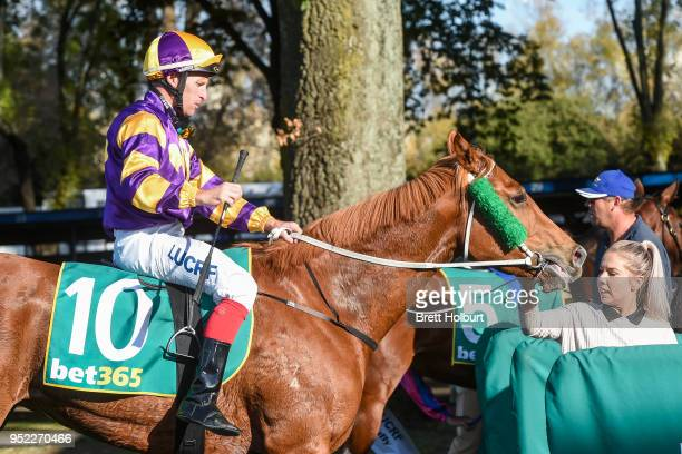 Dale Smith returns to the mounting yard on Pamela Joy after winning the Lodge of the Golden Fleece Slipper Class 1 Handicap at Kyneton Racecourse on...