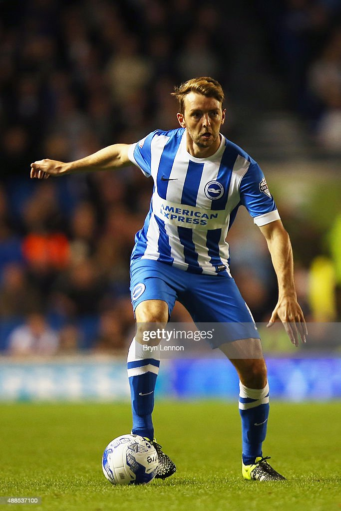 Dale Stephens of Brighton & Hove Albion in action during the Sky Bet Championship match between Brighton & Hove Albion and Rotherham United at Amex Stadium on September 15, 2015 in Brighton, England.