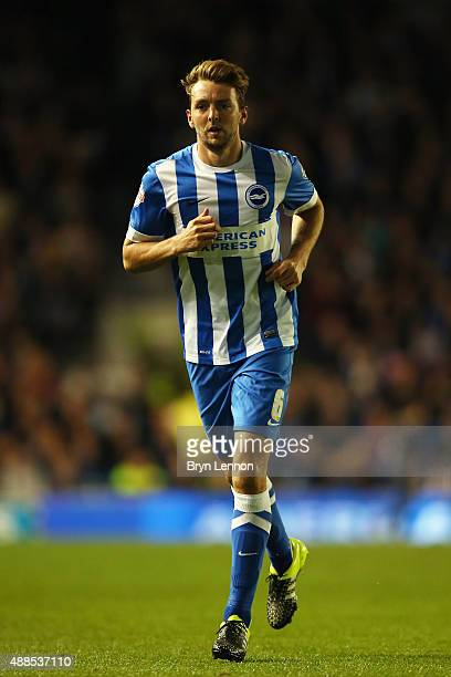 Dale Stephens of Brighton Hove Albion in action during the Sky Bet Championship match between Brighton Hove Albion and Rotherham United at Amex...