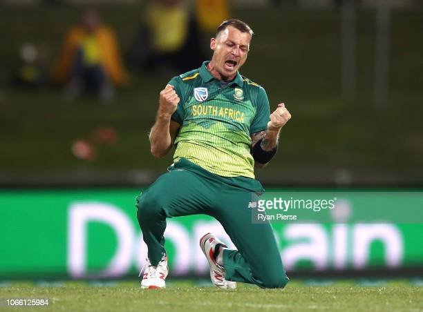 Dale Steyn of South Africa celebrates after taking the wicket of Alex Carey of Australia during game three of the One Day International series...