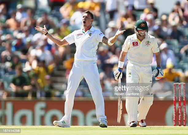 Dale Steyn of South Africa celebrates taking the wicket of Michael Hussey of Australia during day four of the Third Test Match between Australia and...