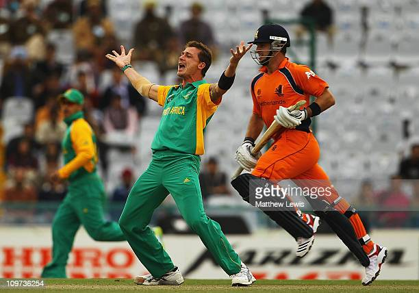 Dale Steyn of South Africa celebrates the wicket of Ryan ten Doeschate of the Netherlands after he bowled him LBW during the 2011 ICC World Cup Group...