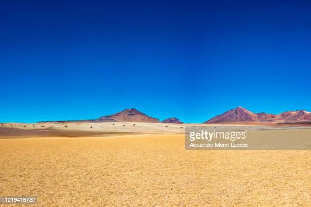dali desert at clearly day in eduardo abaroa national park, uyuni, potosi / bolivia - サルバドール・ダリ ストックフォトと画像
