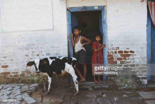 A Dalit household in Bihar India 1996 Dalit refers to the 'untouchables' of the Indian caste system