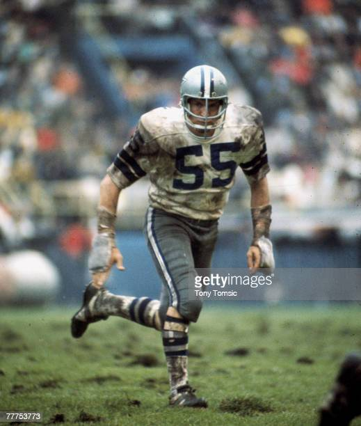 Dallas Cowboys linebacker Lee Roy Jordan in puruit of a ball carrier in a 4937 win over the Buffalo Bills on September 191971 at War Memorial Stadium...