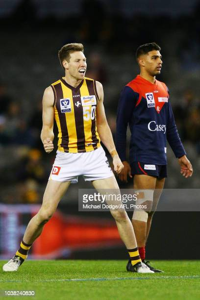 Dallas Willsmore of the Box Hill Hawks celebrates a goal during the VFL Grand Final match between Casey and Box Hill at Etihad Stadium on September...