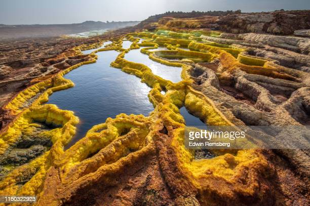 dallol - danakil depression stock pictures, royalty-free photos & images