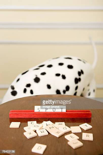 Dalmation and word game