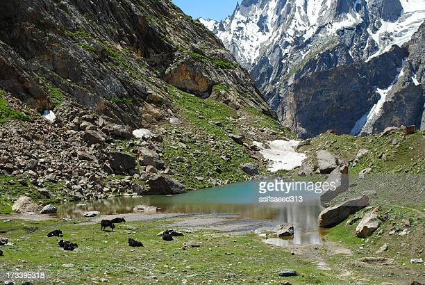 dalsampa campsite - k2 mountain stock pictures, royalty-free photos & images