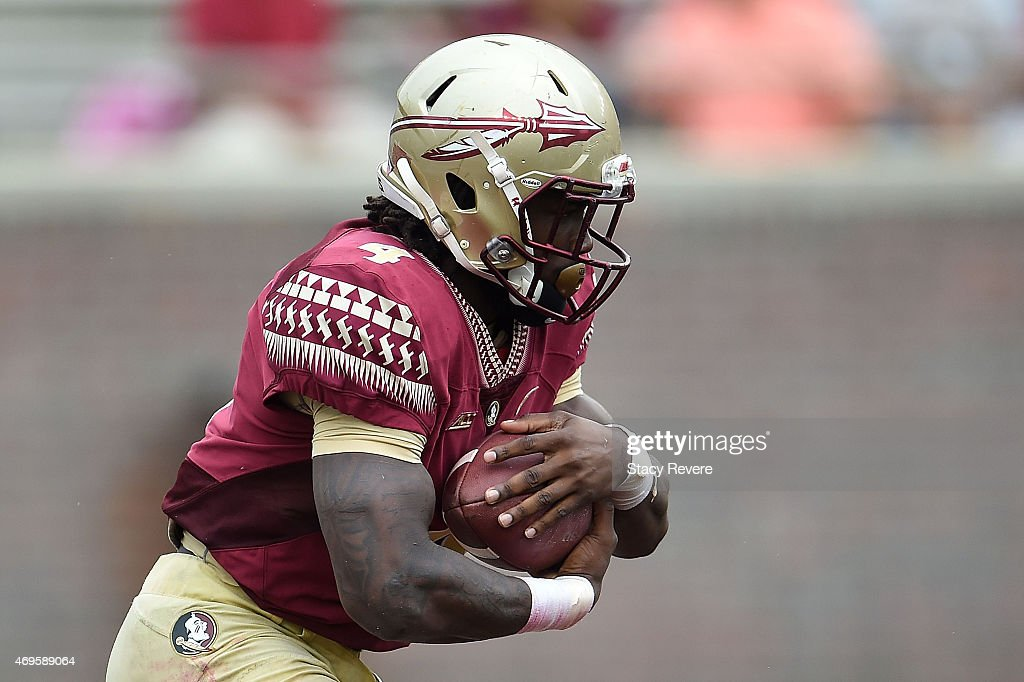 Florida State Spring Game : News Photo