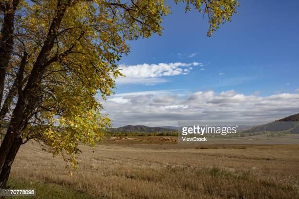 dam scenery in inner mongolia - visual_effects stock pictures, royalty-free photos & images