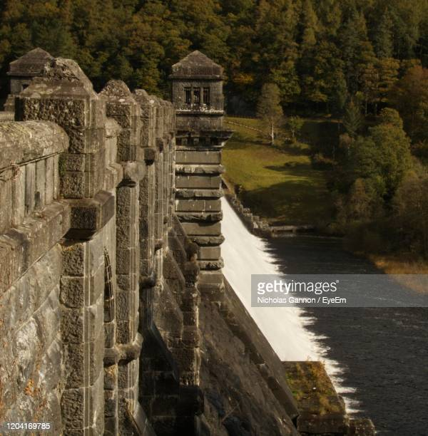 dam wall amidst trees - lake vyrnwy stock pictures, royalty-free photos & images