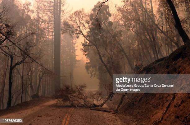 Damage and downed trees from the CZU Lightning Complex fire has left California State Route 236, known locally as the Big Basin Highway, impassable...