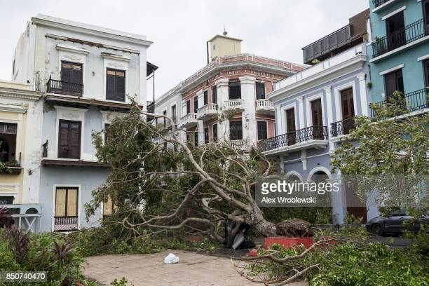 Damage is seen at Plaza de Colon in Old San Juan the day after Hurricane Maria made landfall on September 21 2017 in San Juan Puerto Rico The...