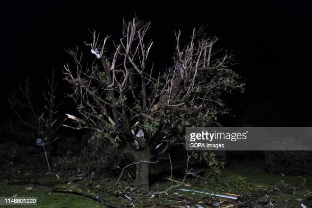 Damage to a tree struck by a tornado Multiple tornadoes touched down across Ohio overnight leaving 5 million people without power in the state