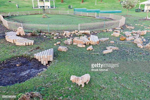Damage to the foreshore at Bronte Beach on June 6 2016 in Sydney Australia Torrential rain over the weekend saw streets and homes flooded while wind...
