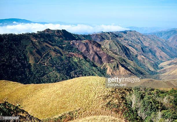 damage to woods by fire in valley of mountains - fstoplight stock photos and pictures