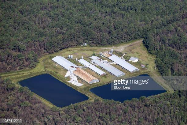 A damaged hog farm stands in this aerial photograph taken above Cypress Creek North Carolina US on Friday Sept 21 2018 Record floods cover much of...