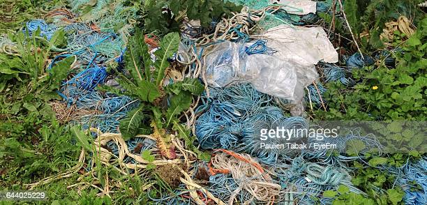 damaged ropes amidst plants on field - paulien tabak stock pictures, royalty-free photos & images