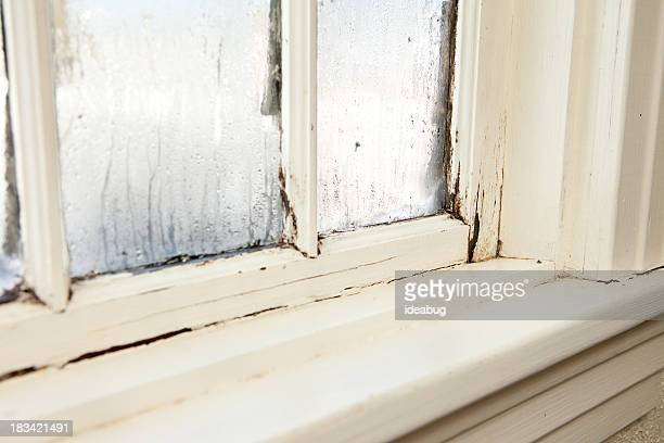 damaged, rotting window inside older home - rotting stock pictures, royalty-free photos & images