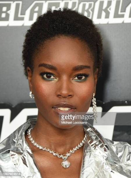 Damaris Lewis attends the BlacKkKlansman New York Premiere at Brooklyn Academy of Music on July 30 2018 in New York City