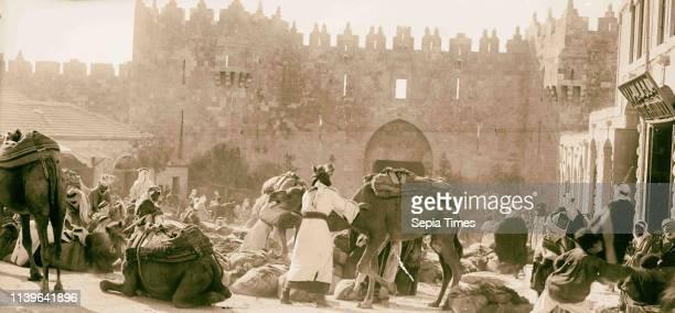 Damascus Gate Bedouins unloading wheatladen camels 1934 Jerusalem