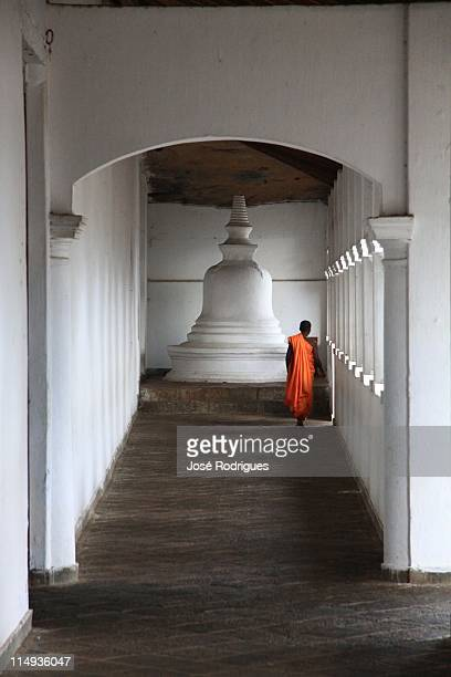 dambulla cave temple - stupa stock pictures, royalty-free photos & images