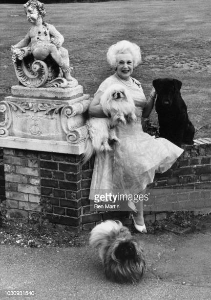 Dame Barbara Cartland English author of romance novels, with her dogs in the garden of her home in Camfield Place, Hertfordshire, September 19th,...