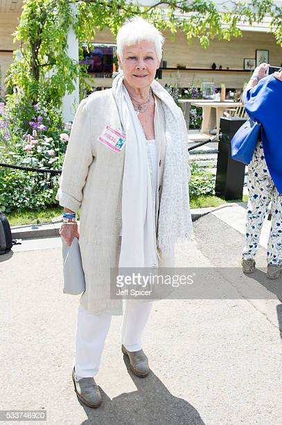 Dame Judi Dench attends Chelsea Flower Show press day at Royal Hospital Chelsea on May 23 2016 in London England