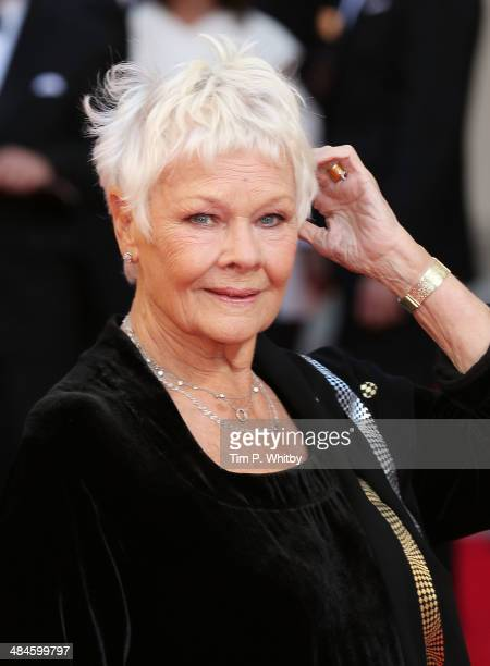Dame Judi Dench attends the Laurence Olivier Awards at The Royal Opera House on April 13 2014 in London England