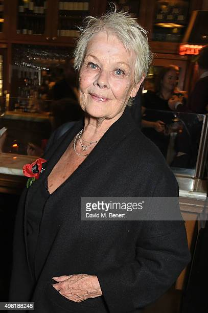 Dame Judi Dench attends the press night after party for 'The Winter's Tale' by the Kenneth Branagh Theatre Company at The National Cafe on November 7...
