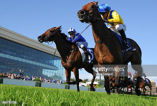 Damian Browne riding Pride of Dubai defeats Chris Symons riding Reemah in Race 8 the William Hill Blue Diamond Stakes during Blue Diamond Day at...
