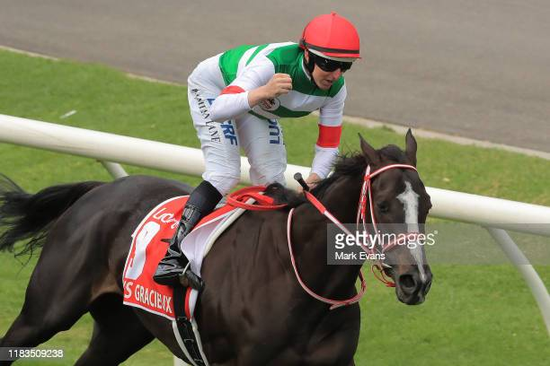 Damian Lane on Lys Gracieux wins race 9 the Ladbrokes Cox Plate during Cox Plate Day at Moonee Valley Racecourse on October 26, 2019 in Melbourne,...