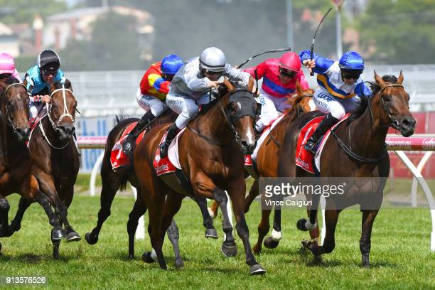 Damian Lane riding Bedford winning Race 7 during Melbourne Racing at Caulfield Racecourse on February 3 2018 in Melbourne Australia