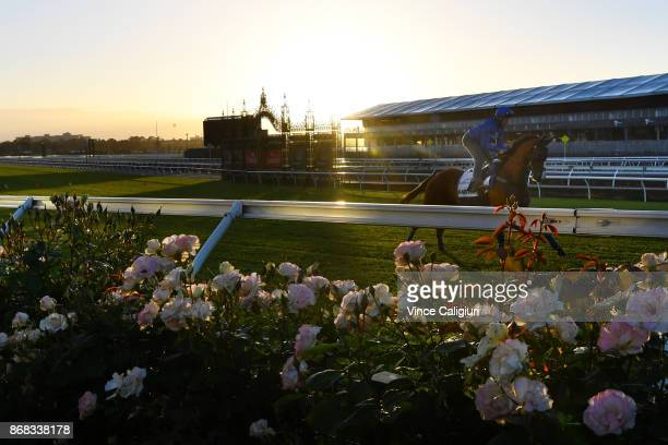 Damian Lane riding Hartnell from the Godolphin stable during a trackwork session at Flemington Racecourse on October 31 2017 in Melbourne Australia
