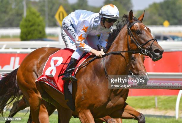 Damian Lane riding Loving Gaby winning Race 5 Chairman's Stakes during Melbourne Racing at Caulfield Racecourse on February 02 2019 in Melbourne...