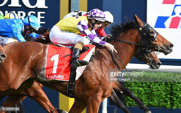 Damian Lane riding Sacred Elixir wins Race 6 Ladbrokes Caulfield Guineas Prelude during Melbourne Racing at Caulfield Racecourse on September 24 2016...