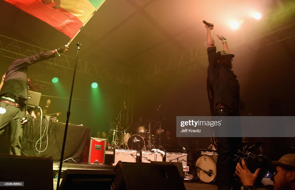 Damian Marley performs during the Superjam onstage at This Tent during day 3 of the 2014 Bonnaroo Arts And Music Festival on June 14, 2014 in Manchester, Tennessee.
