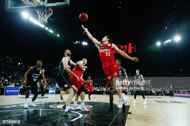 Damian Martin of the Wildcats puts up a shot during the round six NBL match between the New Zealand Breakers and the Perth Wildcats at Spark Arena on...