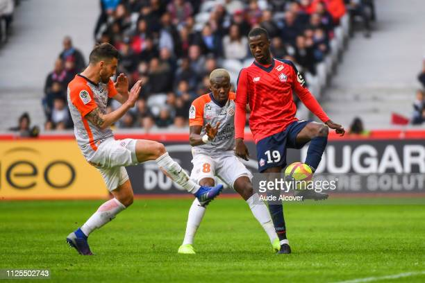 Damien Le Tallec and Ambroise Oyongo Bitolo of Montpellier and Nicolas Pepe of Lille during the Ligue 1 match between Lille and Montpellier at Stade...